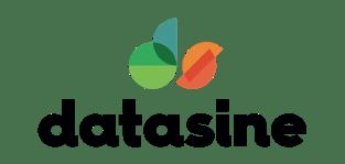 Datasine logo