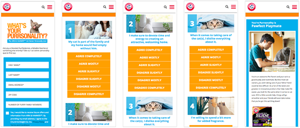 Arm and Hammer Purrsonality quiz zero party data example